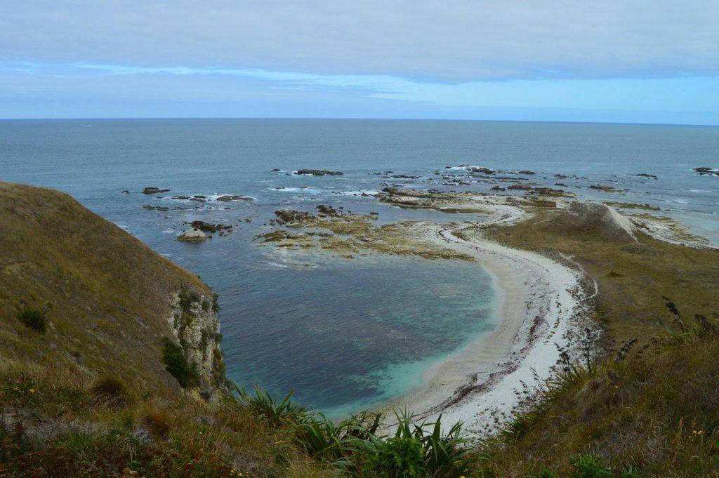 Kaikoura's Pacific Coastline