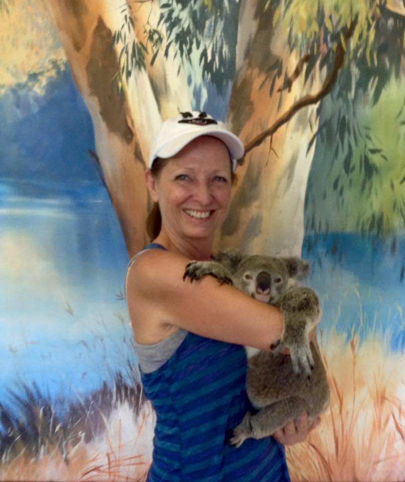 Cairns Koala