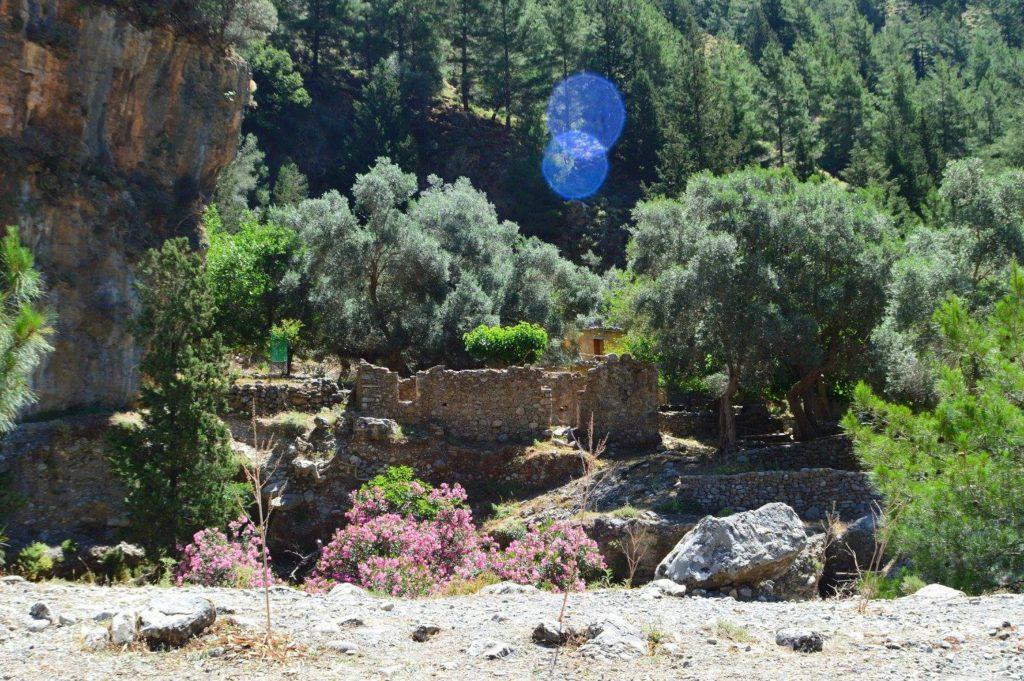 Samaria Gorge1